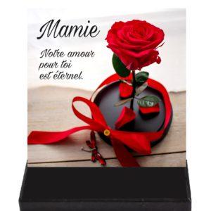 plaque funeraire rose eternelle texte